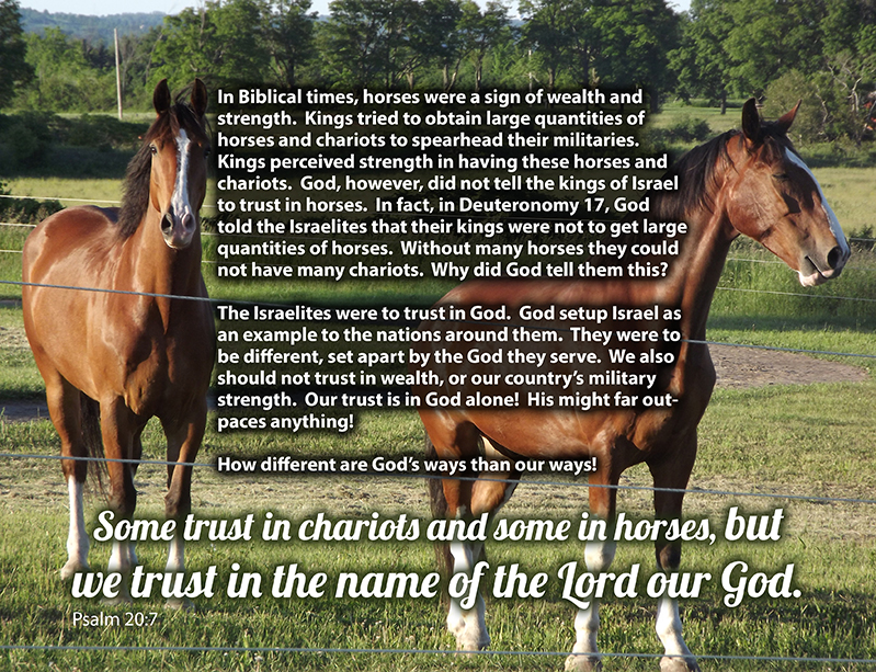 Psalm 20:7 Some trust in chariots and some in horses, but we trust in the name of the Lord our God.